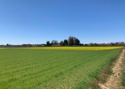Terreno agricolo Saronno (VA)